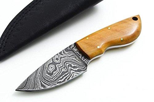 BucknBear Custom Handmade Mini Skinner Damascus Fixed Blade Hunting Knife (Olive Wood)