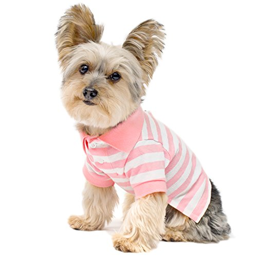 Stinky G Pink Stripe Dog Polo Shirt Medium #12