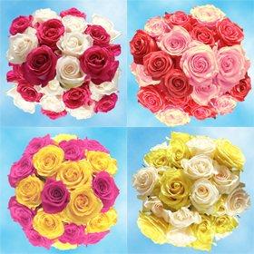 Amazoncom Globalrose 50 Rosas Colores Surtidos Perfectas Para