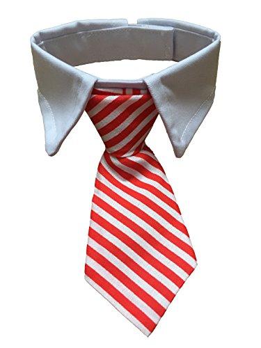 Vedem Pet Cotton Neck Tie with White Collar