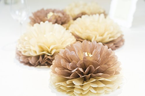 PAPER JAZZ dual color pompom flower lantern paper pinwheel fan party decoration kit for wedding birthday bridal shower baby shower home store decoration (TAN (Dual Lanterns)
