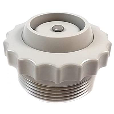 Spa Check Valve (Light Gray) from Val-Pak