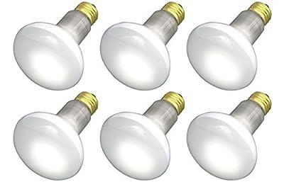 45R20/FL 120V - 45 Watt R20 Flood - E26 Base 45W - Light Bulbs...