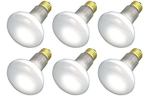 ((Pack Of 6) 45R20/FL 120V - 45 Watt R20 Flood - E26 Base 45W - Light Bulbs)