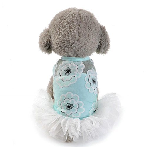 Pet Dress,Haoricu Hot Sale!2017 Dog Cat Floral Lace Mesh Skirt Puppy Princess Dress for Small Dogs Costume (S, (Dresses For Dogs)