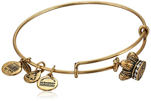 Alex Ani Womens Bangle Rafaelian