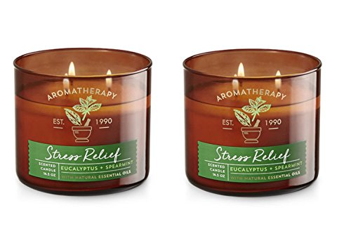 Bath and Body Works Aromatherapy 3 Wick Candle, 14.5 Oz, Eucalyptus Spearmint (2 Pack)