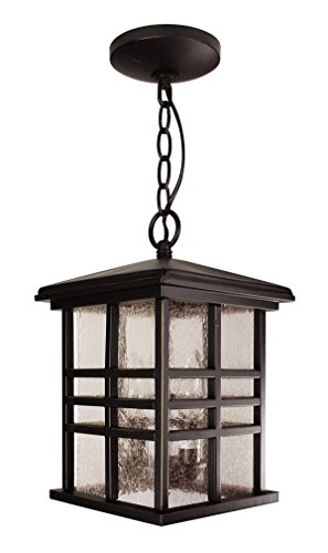 Transglobe Lighting 4638 WB Outdoor Hanging Pendant with Seeded Glass Shades, Weathered Bronze Finished