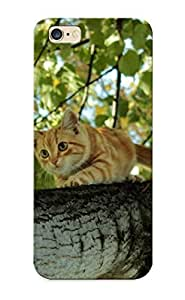 Case Provided For iphone 5C Protector Case Cat Ontree Phone Cover With Appearance