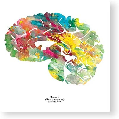 Picture Poster Psychology Human Brain Art Framed Print The Human Mind