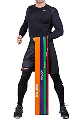 Resistance Bands By DS DOG - Elastic Workout Bands With 5 Levels Of Stretch Resistance - Assisted Pull Up Bands For Home Or Gym - Natural Latex Powerlifting Exercise Bands - Single Unit
