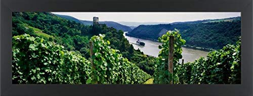 Easy Art Prints Panoramic Images's 'Vineyard in Bacharach Along River Rhine, Rhineland-Palatinate, Germany' Premium Framed Canvas Art - 24