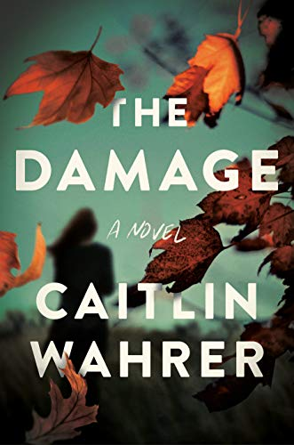 Book Cover: The Damage: A Novel