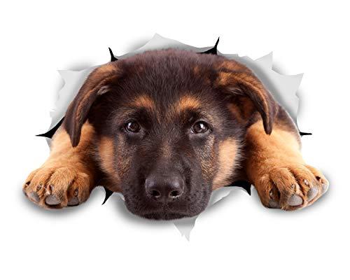 Dog Shepherd Sticker (Winston & Bear 3D Dog Stickers - 2 Pack - Resting German Shepherd for Wall, Fridge, Toilet and More - Retail Packaged German Shepherd Stickers)