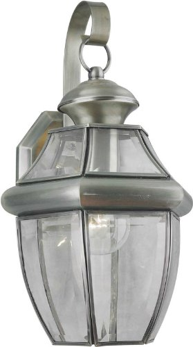 Forte Lighting 1201-01 Outdoor Wall Sconce from the Exterior Lighting Collection, Antique Pewter ()