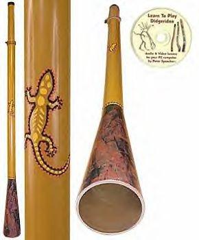 Amazon com: Didgeridoo Expo Gecko Slider Didgeridoo Package with