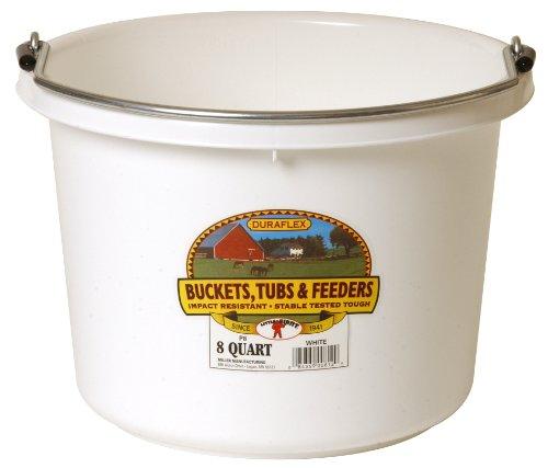 Little Giant P8WHITE Dura Flex Plastic Bucket for Livestock, 8-Quart, White