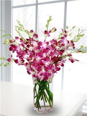 Fresh Flowers - 20 Premium Purple Dendrobium Orchids with Vase by eflowerwholesale