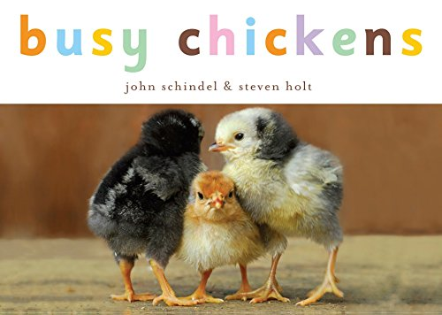 Busy Chickens (A Busy Book) (Best Chicken Breeds For Kids)