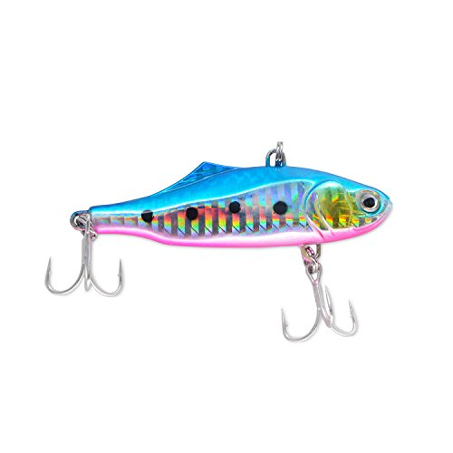 Discover Fish Fishing Spoons Lures Freshwater Saltwate Sinking Metal Spoons Crankbaits Minnows Spoons Baits for Trout Bass Pike Walleye Salmon Lures 2.8inch 0.8oz Blue White