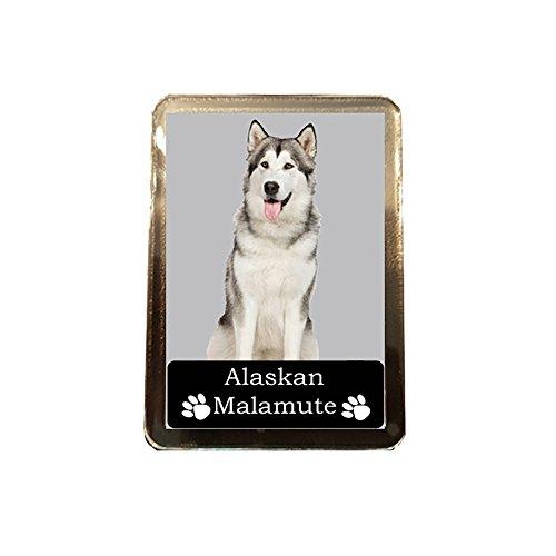 Alaskan Malamute - Collectable Dog Fridge Magnet