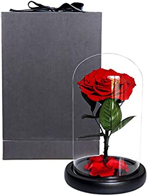 Amazon.com: MUZIDP Funda de Cristal Eternal Flores, Regalos ...