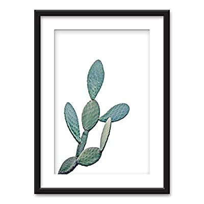 Unbelievable Artistry, Framed Cactus on White Background Black Picture Frames White Matting, Made With Top Quality