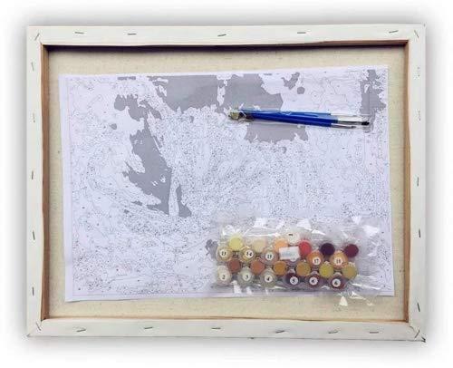 Leinwand ist Vormontiert Abstrakter K/önig der L/öwen Suntown Holzrahmen Malen nach Zahlen 40 x 50cm DIY Leinwand Gem/älde f/ür Erwachsene und Kinder mit 3 B/ürsten und Acrylfarben