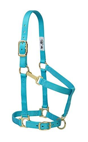 (Weaver Leather Basic Adjustable Nylon Halter, Turquoise, 1