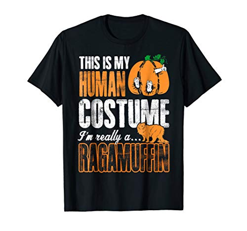 This Is Human Costume Im Really Ragamuffin Halloween Tshirt