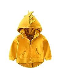 Little Boys Toddler Zip-up Long Sleeve Dinosaur Hoodies Outwear Coat Jacket