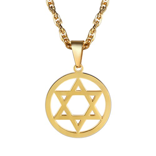 Judaica Jewelry (Jewish Magen Star of David Necklace Men/Women Bat Mitzvah Gift Israel Judaica Hebrew Jewelry Hanukkah Pendant,18K Gold Plated,PSP2946J)