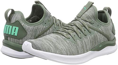 green quarry De Flash Chaussures Running Wn's Evoknit Ignite Wreath Laurel Puma Femme FavxPAw