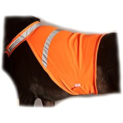 2PET Reflective Safety Vest - Used for High Visibility - Protects Pets From Cars & Hunting Accidents in Both Urban and Rural Environments - Medium Radiant Orange