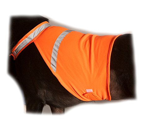 X-large Bright Reflective Safety Vests - 7