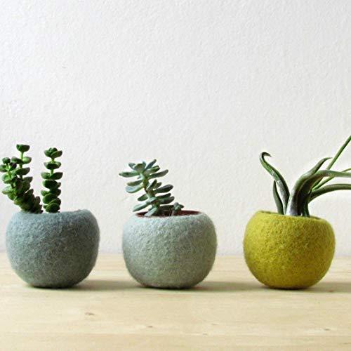 Felt succulent planter/hygge decor/felted pod/Succulent terrarium/Green felt vases/felt bowl/home decor