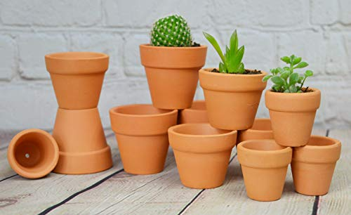 (My Urban Crafts Mini Terracotta Clay Pots - 3 Different Size Assortment - Great for Baby Succulent Cuttings & Propagating, DIY Craft Projects, Wedding & Party Favors (12 Pcs Variety Pack))