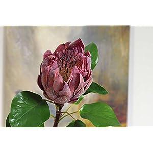 Rinlong Protea Cynaroides Artificial Flower 43