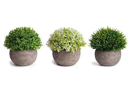 - MoonLa Artificial Plants Potted Faux Fake Mini Plant Greenery Green Grass Flower Topiary Shrubs In Gray Pot for Bathroom Home House Decor (Set of 3)