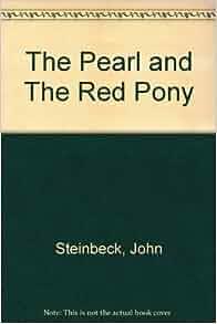 John Steinbeck Critical Essays