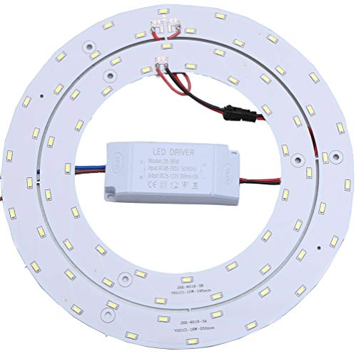 Round Fluorescent Light Led in US - 6