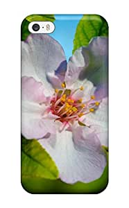 Iphone 5/5s Case, Premium Protective Case With Awesome Look - Almond Flower Earth Tree Nature Flower wangjiang maoyi by lolosakes