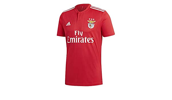 407ed24b Amazon.com : adidas 2018-2019 Benfica Home Football Soccer T-Shirt Jersey :  Sports & Outdoors