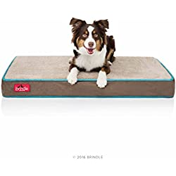 Brindle 4 Inch Memory Foam Orthopedic Dog Bed - Removable Velour Cover with Waterproof Liner - Medium Mocha Blue 34 Inch x 22 Inch