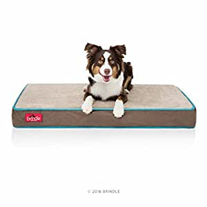 Brindle 4 Inch Solid Memory Foam Orthopedic Dog Bed with Removable Waterproof Velour Cover - Medium Mocha Blue 34 Inch x 22 Inch