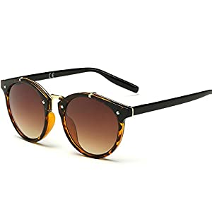 Vintage Retro Keyhole Mirror Fade Plastic Frame Round Sunglasses Men Women 48mm (Tortoise/Brown, 48)