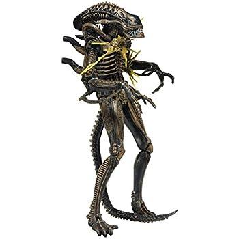 Aliens Series 12 Brown Xenomorph Warrior Battle Damaged AF Neca Toys Authentic