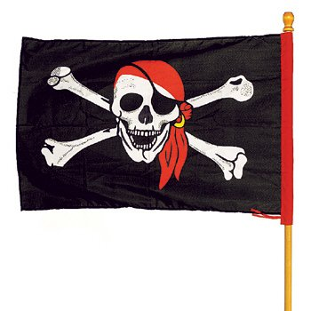 Huge Pirate Flag with Skull and Crossbones! -