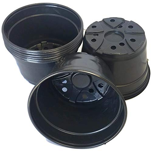 8 inch plastic pots - 7