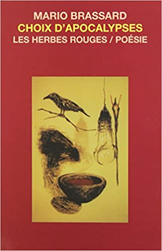 Book Choix d'apocalypses